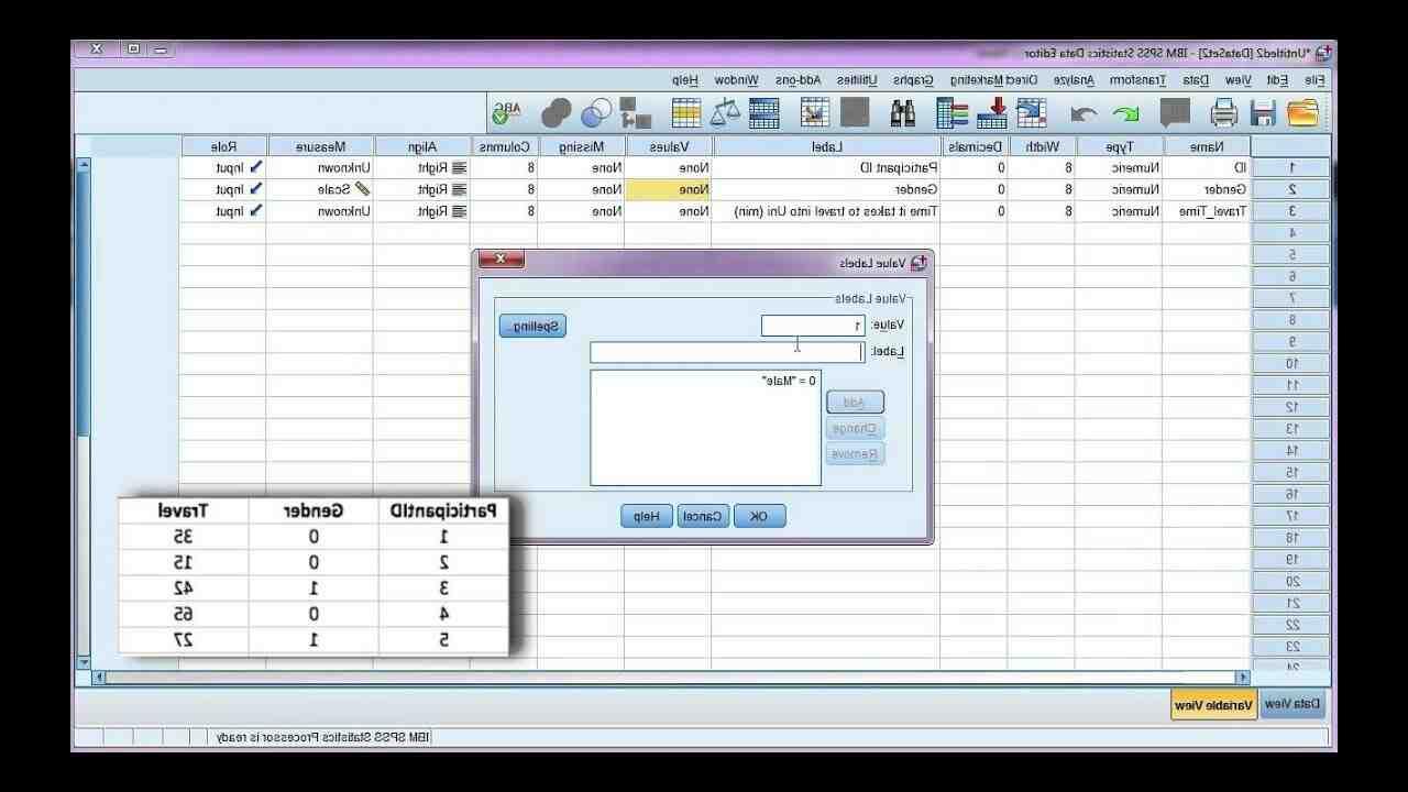 Comment entrer des données dans SPSS